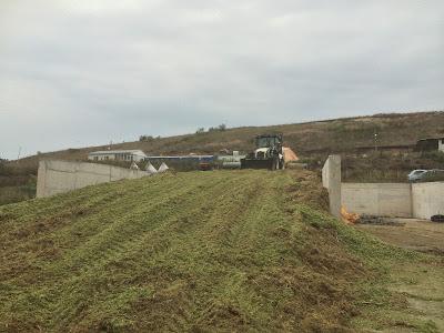süt çiftliği mısır silajı hazırlanması 1000 tonluk depoya sıkıştırılıyor.