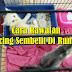 Cara Rawatan Kucing Sembelit Di Rumah