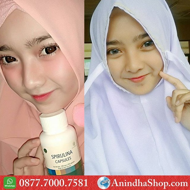 Masker Spirulina Medan