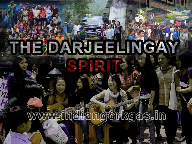 """Endangered Species: The Darjeelingay Spirit""- A Confused man's perspective."