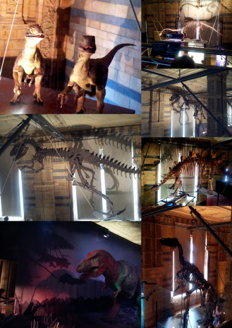 Whoopidooings: Dinosaurs at the Natural History Museum