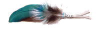 Native American prayer feathers