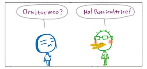 Ornitorinco? No! Puericultrice!