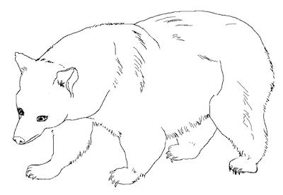 Gambar mewarnai beruang untuk anak