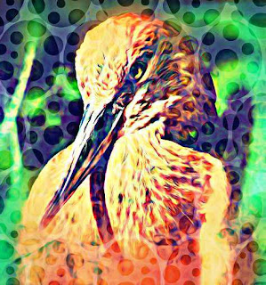 African Mythological Monster, Impundulu the Lighting Bird