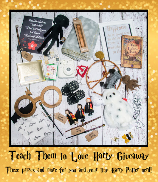 Teach Them to Love Harry Potter Giveaway