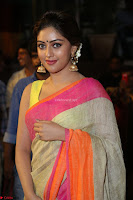 Anu Emanuel Looks Super Cute in Saree ~  Exclusive Pics 061.JPG