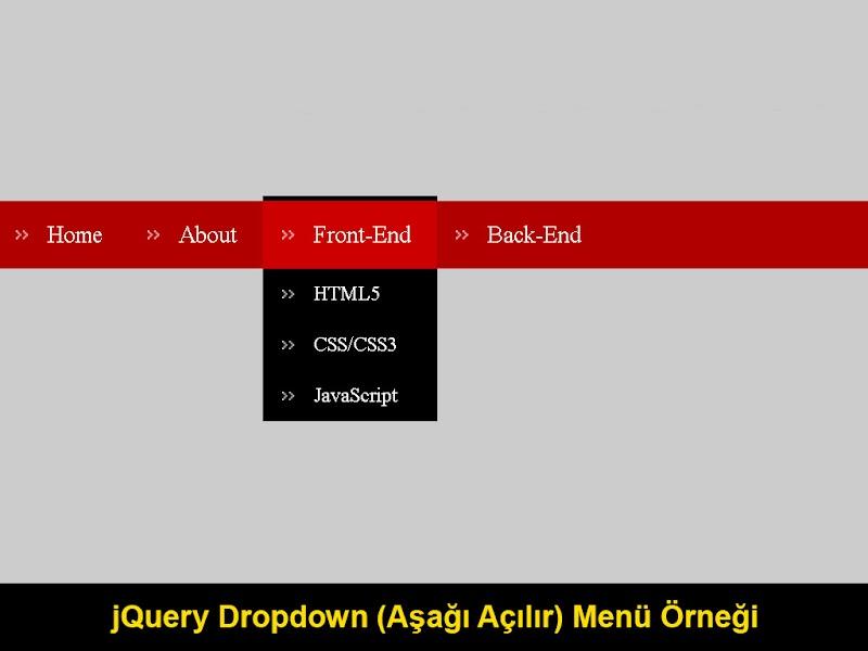 jQuery Dropdown (Aşağı Açılır) Menu Örneği