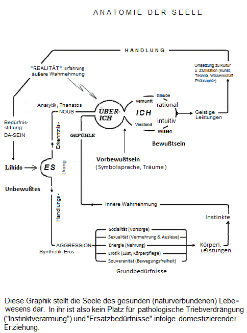 Freuds Instanzen-Model