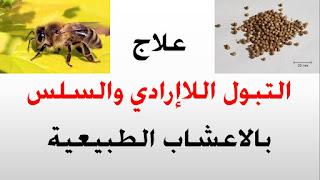 مجلة البيت اللبناني