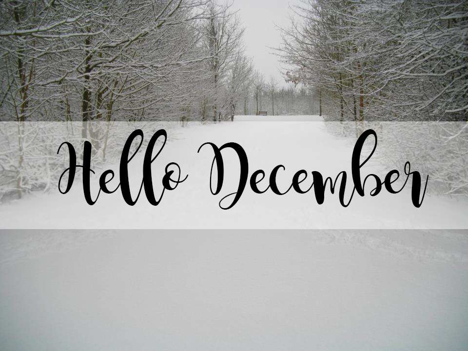 Delightful Hello December | Blogmas Day 1