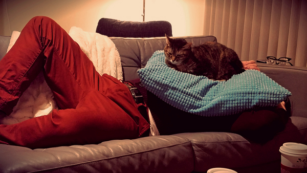 image of Deeky stretched out on my couch with a pillow over his face; Sophie the Torbie Cat is sitting atop the pillow