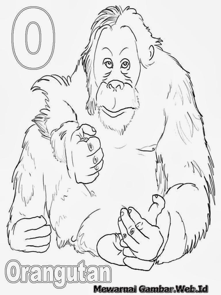100 [ Gambar Kartun Binatang Jinak ]