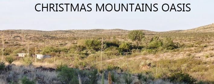 CHRISTMAS MOUNTAINS OASIS