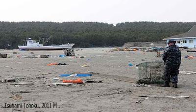 Tsunami Tohoku