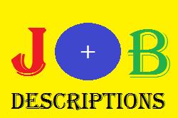 JOB DESCRIPTION OF DISTRICT HEAD