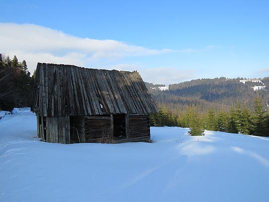 Jeden ze starych szałasów na Halach Gorcowskich.