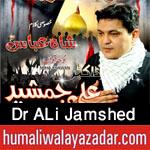 http://www.humaliwalayazadar.com/2017/09/dr-ali-jamshed-nohay-2018.html