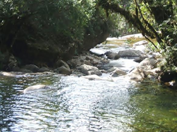 Parque Nacional do Caparaó