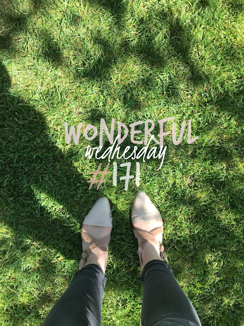 Wonderful Wednesday #171