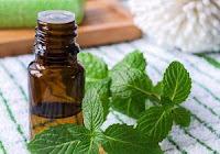 5 Cara Alami Mengatasi Mual Yang Disebabkan Efek Samping Pengobatan Kanker Serviks - peppermint
