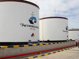 Consumo interno del gas natural en Ecuador