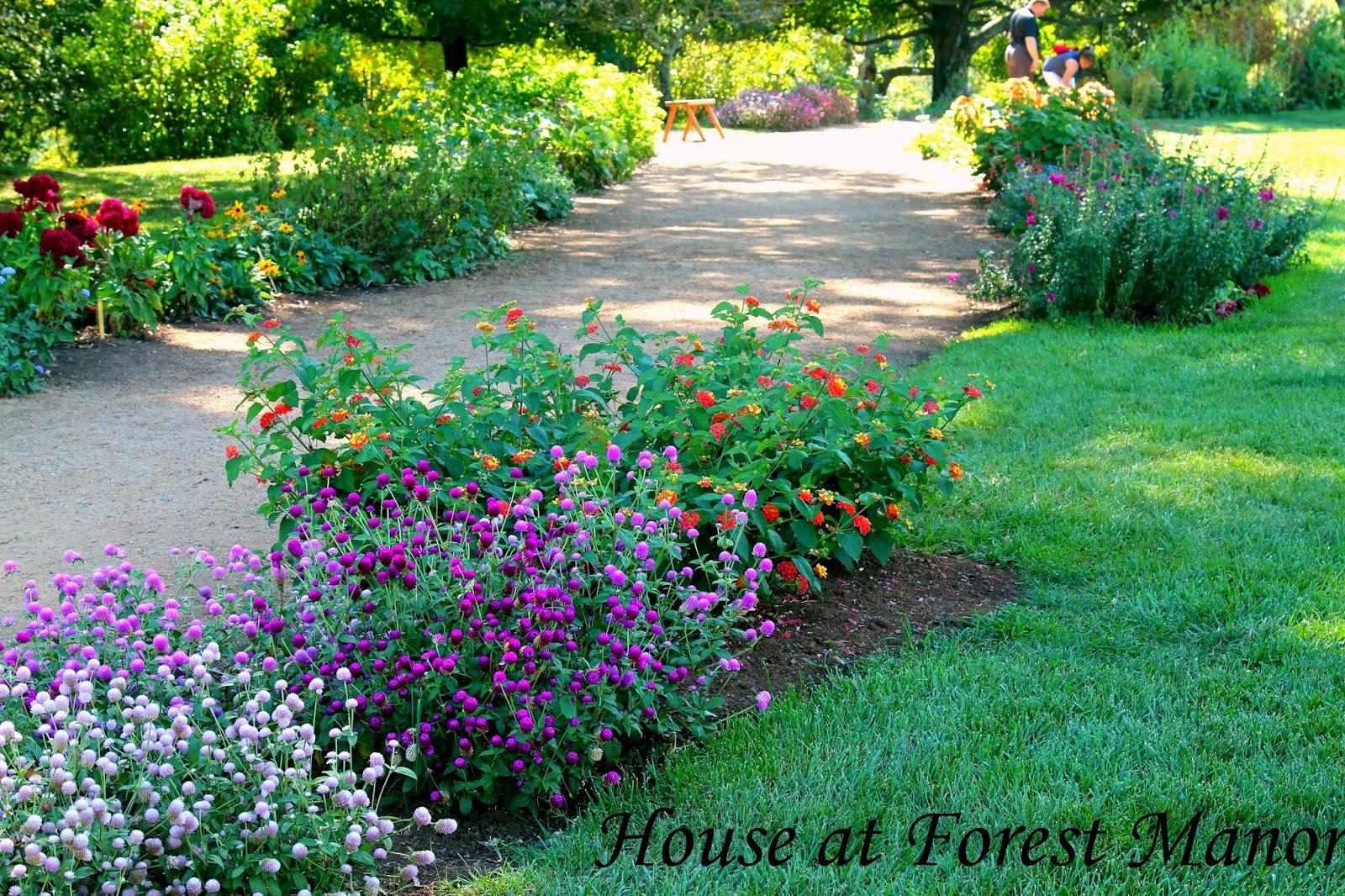 Our Garden ...