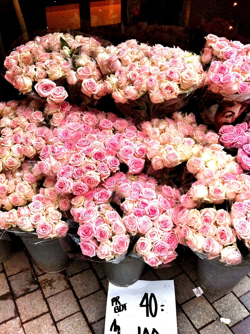 Pink roses for sale