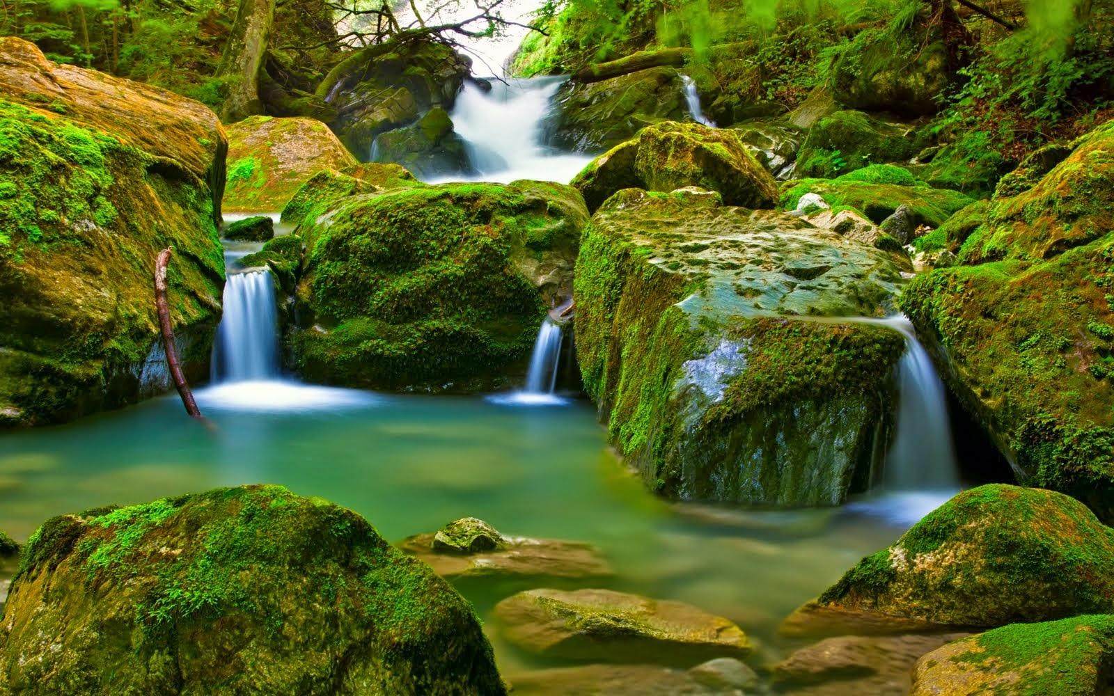Fondos De Pantalla Colores En Banne: Plus Imagen Gratis: Paisajes Naturales Hd. Colores Vivos