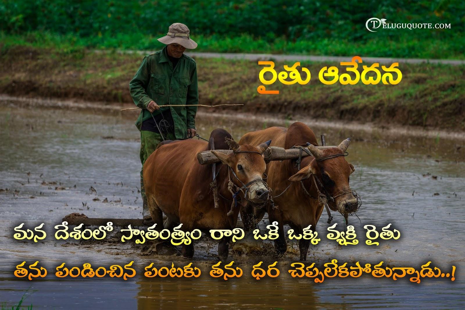 Farmer Quotes | Sad Farmers Quotes In Telugu Telugu Quotes