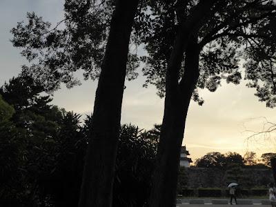 大阪城公園 セミの抜け殻 シルエット