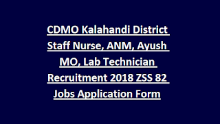 CDMO Kalahandi District Staff Nurse, ANM, Ayush MO, Lab Technician Recruitment 2018 ZSS 82 Govt Jobs Application Form