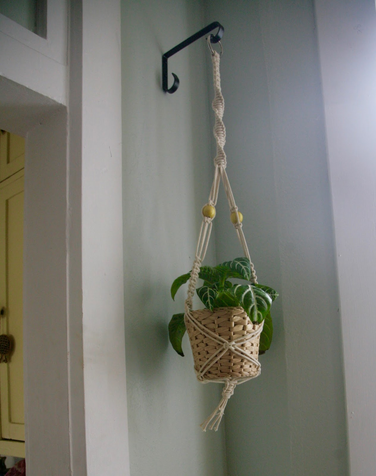 Inder Loves Folk Art A Macrame Plant Hanger Window