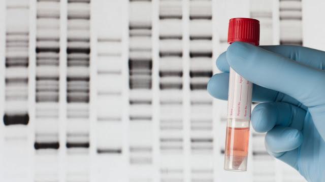 """""""Literalmente empecé a llorar"""": Se somete a una prueba de ADN y descubre sorprendentes secretos sobre su familia"""