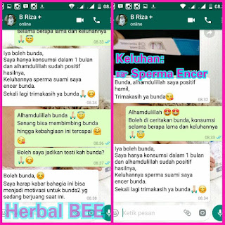 testimoni program hamil holistic