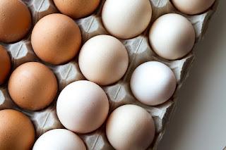 Resultado de imagem para ovo vermelho e branco