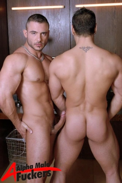 Gay Muscle Xxx 101
