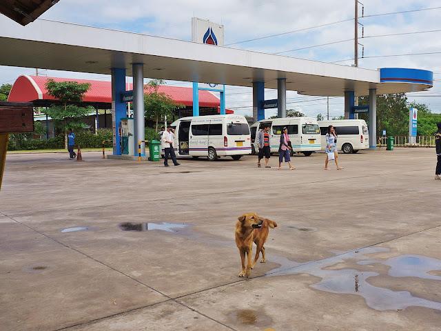 Изображение автозаправки, собаки и людей