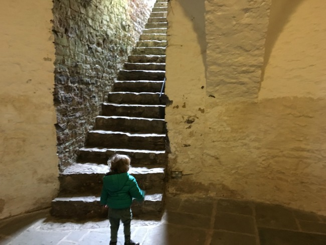 toddler looking at steps going up