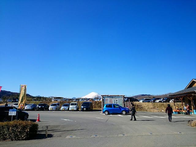 中井中央公園 富士山