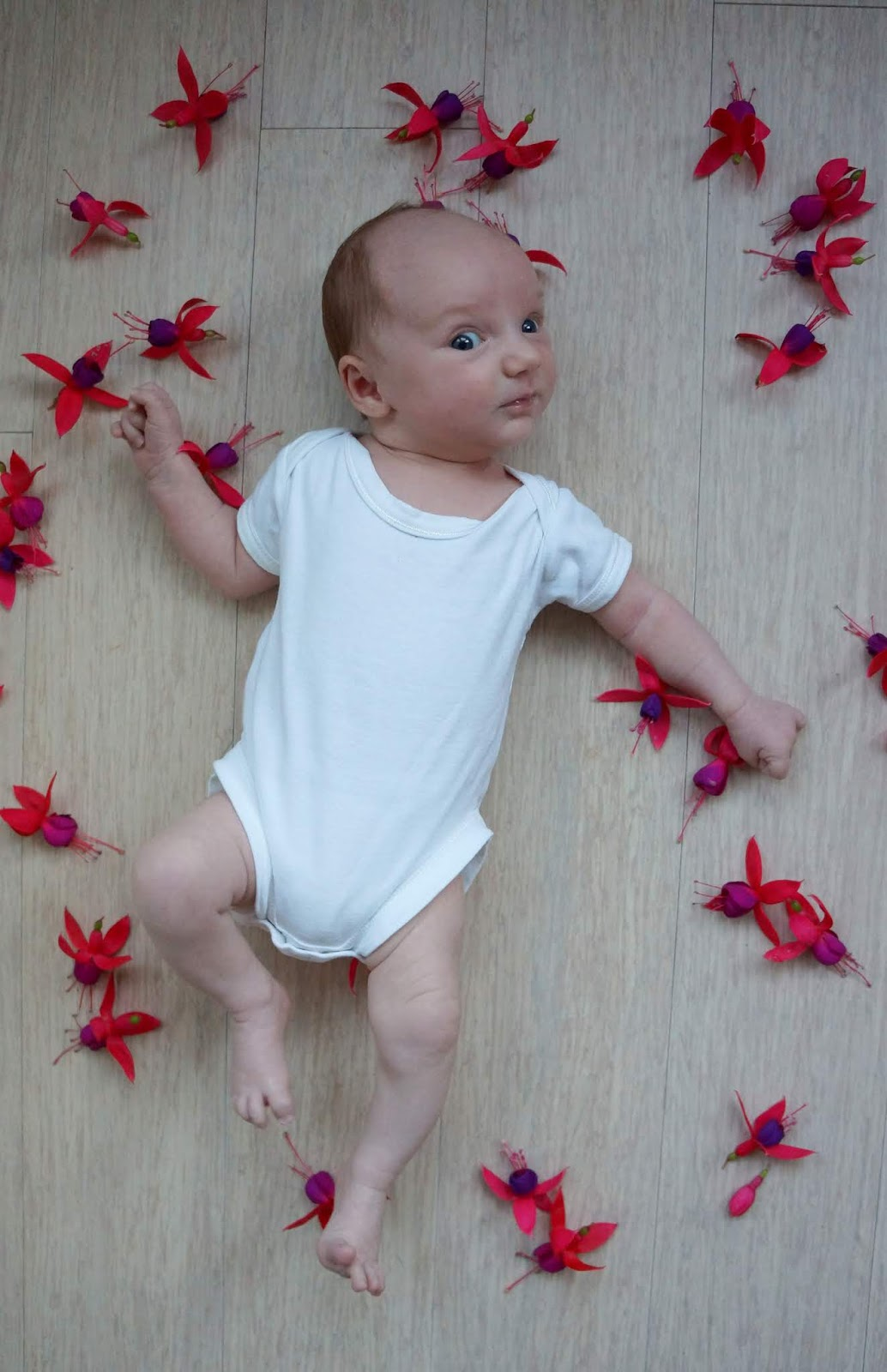 baby portrait amongst flowers