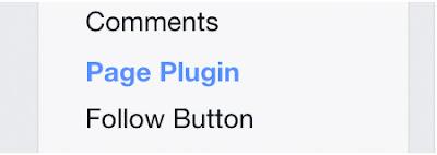 Facebook Plugin Like Box