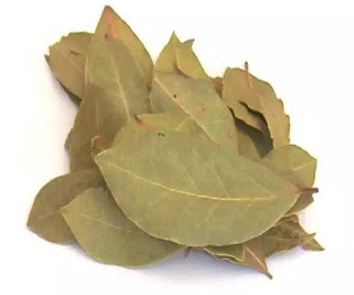 Know What is the Benefits of Sharp Leaf