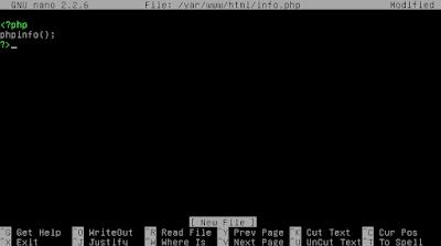 Kemudian isikan scriptnya pada file yang kita buat tadi (info.php)