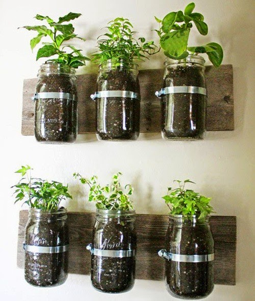 Grow The Green Trees In Small House