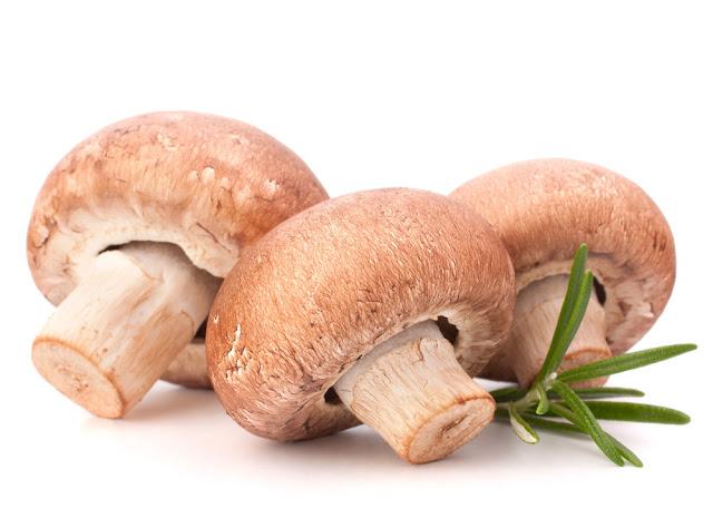 Mengkonsumsi Jamur Bisa Mengurangi Resiko Kanker Payudara Sampai 64%