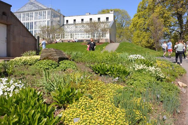 Oslo le parc bontaisue et les serres de plantes  tropicales