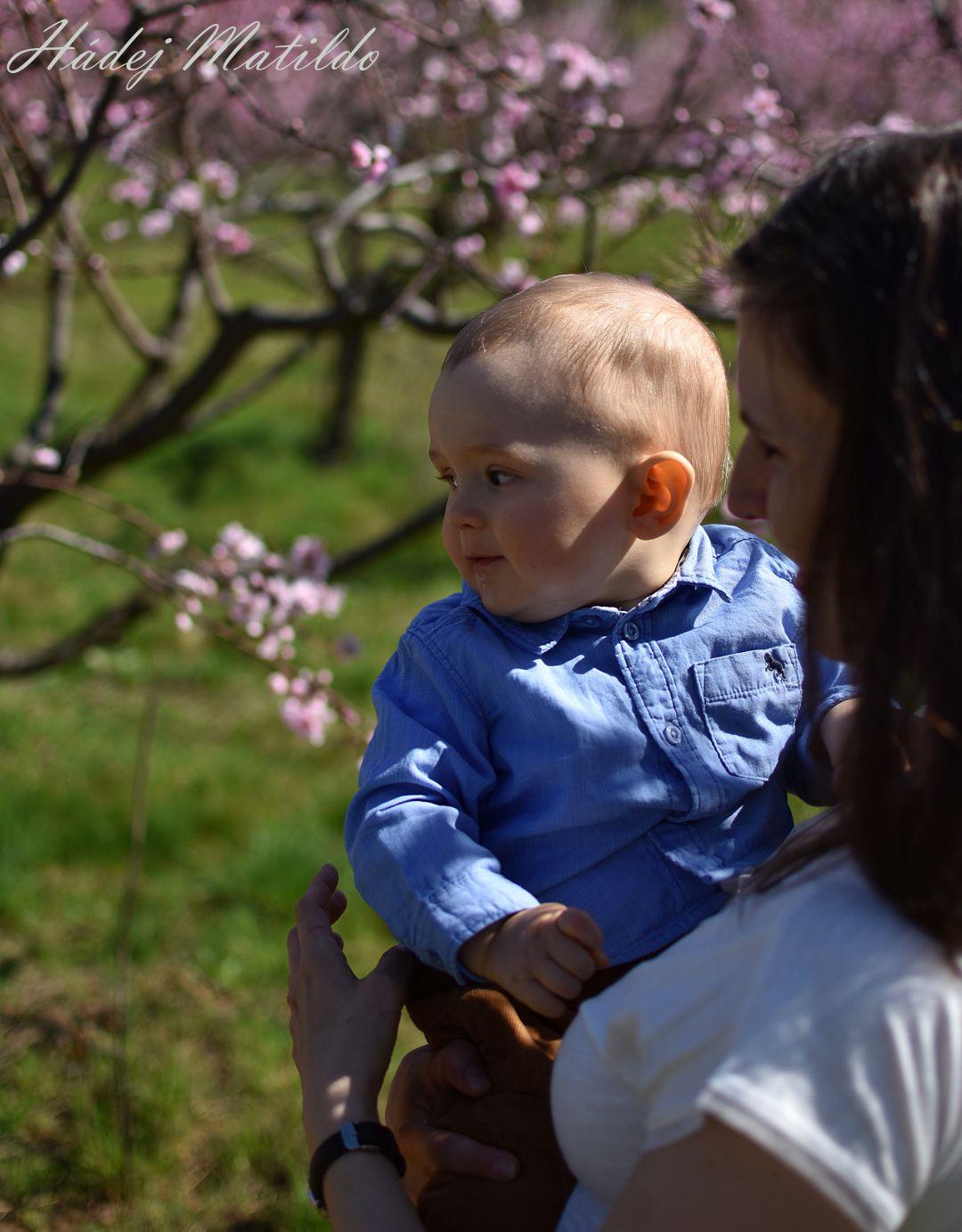 miminko, devět měsíců, život s miminkem