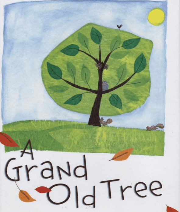 A Grand Old Tree: Book Review. This is a fabulous book that every primary teacher needs.It's great for a forest/tree study or as a tie-in to Earth Day. #thegrandoldtree #booksforkids #gradeonederful #trees #earthday
