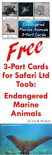 FREE 3-Part Cards for Safari Ltd Endangered Marine Animals Toob